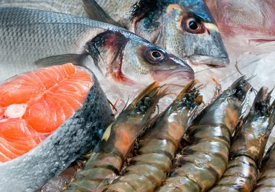طرح توجیهی عمل آوری ماهی