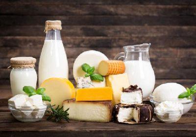 تولید شیر ماست خامه